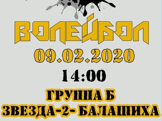 Чемпионат Московской области по волейболу
