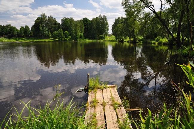 Голосование на портале «Добродел» по очистке водоемов в Подмосковье в 2022 году